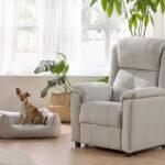 Salón con perro y butaca relax 10f-0010 color blanco